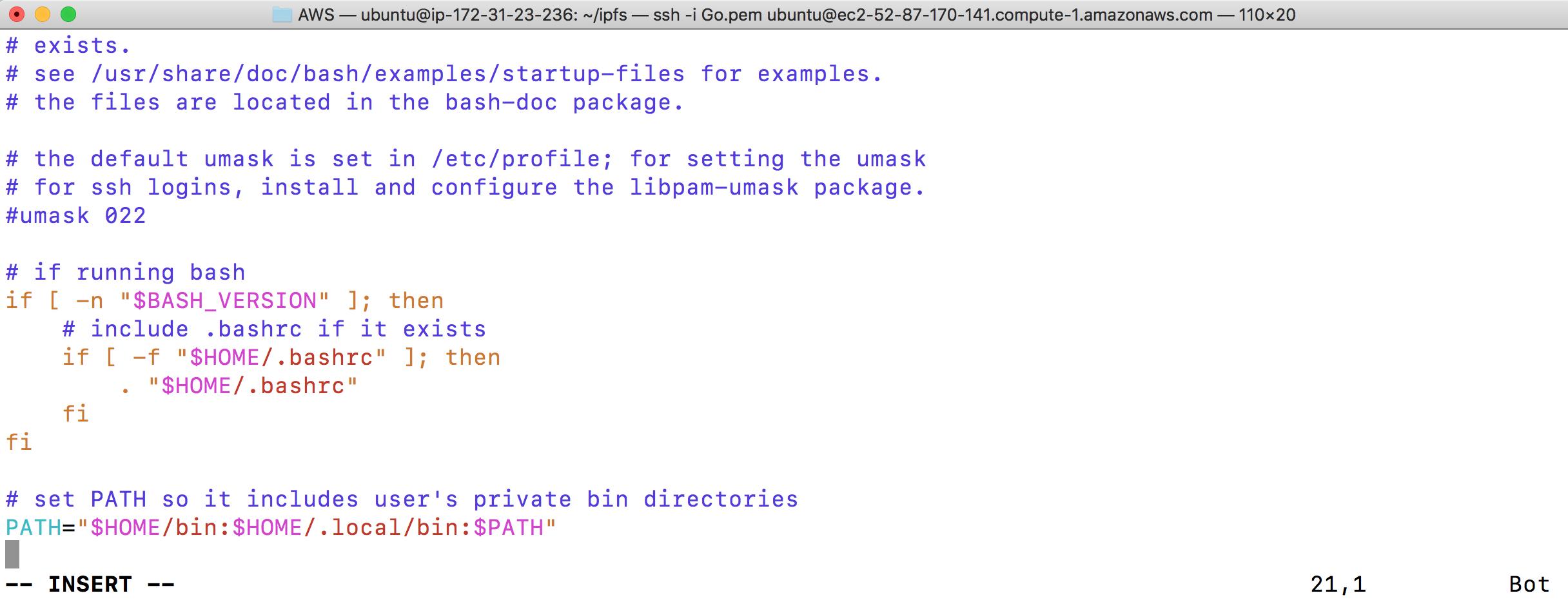 Blockchain ] 在AWS 建立私有IPFS - 在Node-1 安裝與設定IPFS